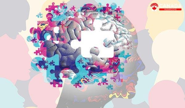 PSYCHEDELICS TREATING MENTAL ILLNESSES